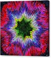 Kaleidomicro Canvas Print