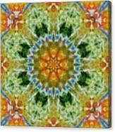 Kaleidoscope 3 Canvas Print