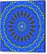 Kaleidoscope Iris Three Canvas Print