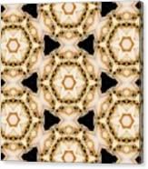 Kaleidoscopes- 11 Canvas Print