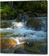 Kanaka Creek Canvas Print