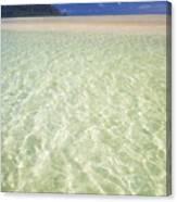 Kaneohe Sandbar Canvas Print