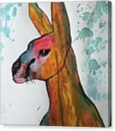 Kangaroo Water Canvas Print
