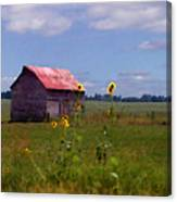 Kansas Landscape Canvas Print