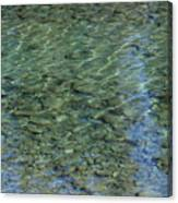 Kathleen River Keflections Canvas Print