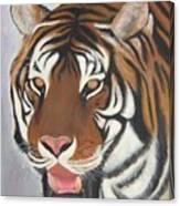 Kathystiger Canvas Print