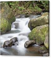 Kauai Flow Canvas Print