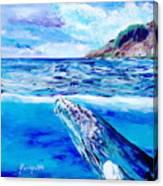 Kauai Humpback Whale Canvas Print