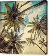 Kauai Island Palms - Blue Hawaii Photography Canvas Print