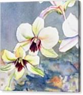 Kauai Orchid Festival Canvas Print