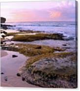Kauai Tide Pools At Dawn Canvas Print