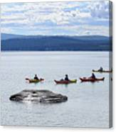Kayakers Paddle To Fishing Cone On Yellowstone Lake Canvas Print