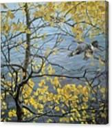 Kb Bateman Aspen And Kingfisher Robert Bateman Canvas Print