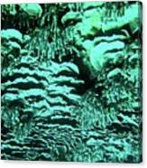 Kealakekua Plate Coral Canvas Print