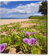 Keawakapu Beach Canvas Print