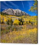 Kebler Pass Gold Canvas Print