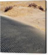 Kelso Dunes Portrait Canvas Print