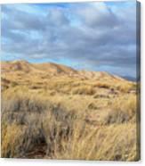 Kelso Dunes Wilderness Canvas Print