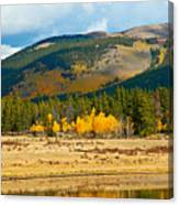 Kenosha Pass Aspens 4 Canvas Print