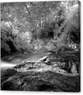 Kerosene Creek Canvas Print