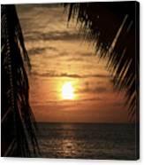 Key West Palm Sunset 2 Canvas Print