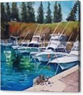 Kiama Harbour Canvas Print