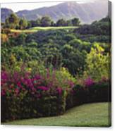 Kiele Course, Flowers And Vegetation Canvas Print