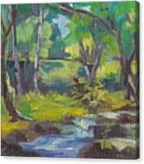 Kilauea Stream Canvas Print