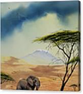 Kilimanjaro Bull Canvas Print