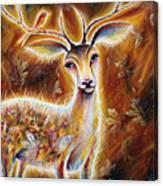 King-deer Canvas Print