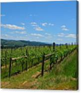 King Estate Vineyard Canvas Print