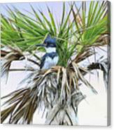 King Fisher Palm Canvas Print
