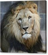 King In Exile Canvas Print