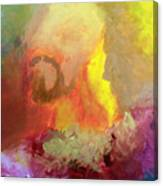 King Of Peace Canvas Print