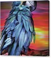 King Parrot 01 Canvas Print