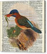 Kingfisher Bird With A Lizard Illustration Over A Old Dictionary Canvas Print