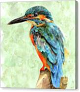 Kingfisher Blue Canvas Print