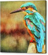 Kingfisher's Perch 2 Canvas Print