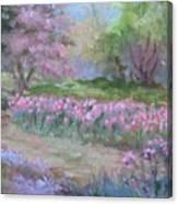 Kingwood Tulips Canvas Print