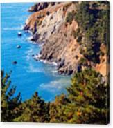 Kirby Cove San Francisco Bay California Canvas Print