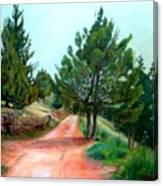 Kirjat Smona      1999     Canvas Print