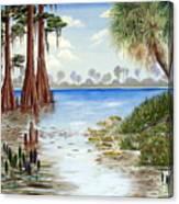 Kissimee River Shore Canvas Print