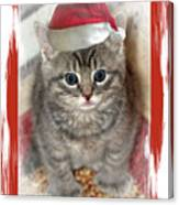 Kitten Playing Santa  Canvas Print