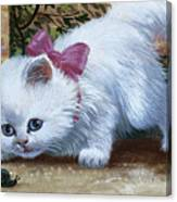Kitten With Snail And Ball Canvas Print