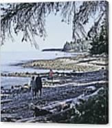 Kitty Colemans Beach - Bc Canvas Print