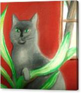 Kitty In The Plants Canvas Print