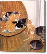 Kitty Litter I Canvas Print