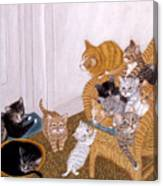 Kitty Litter II Canvas Print