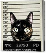 Kitty Mugshot Canvas Print