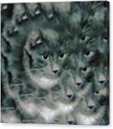 Kitty Portrait  Canvas Print